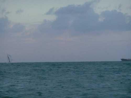 Robin-Marais.Transat-6.50-2013.arrivée.157ea3342db2ff.jpg